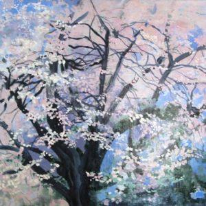 Spring Tree Yorktown